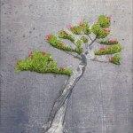 bonsai-groot-2009-stamdraai