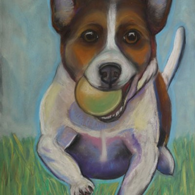 Got Balls - Smooth coat Jack Russell with ball