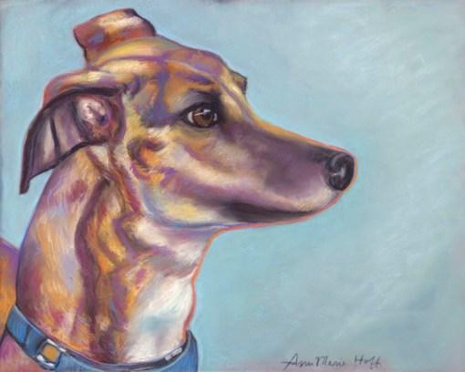 Greyhound looks west