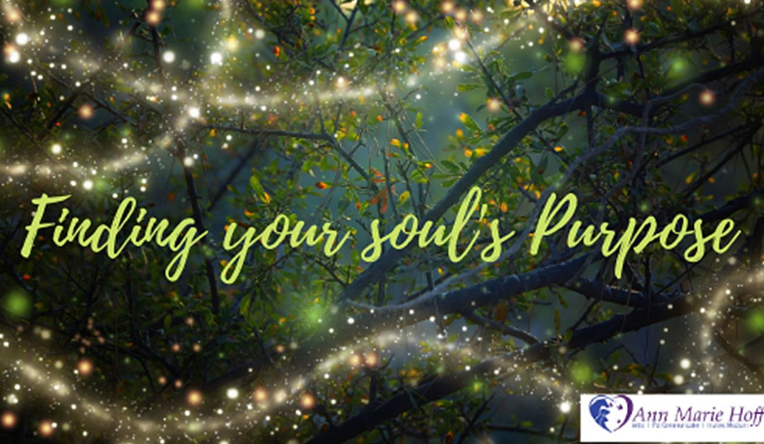Finding Your Soul's Purpose