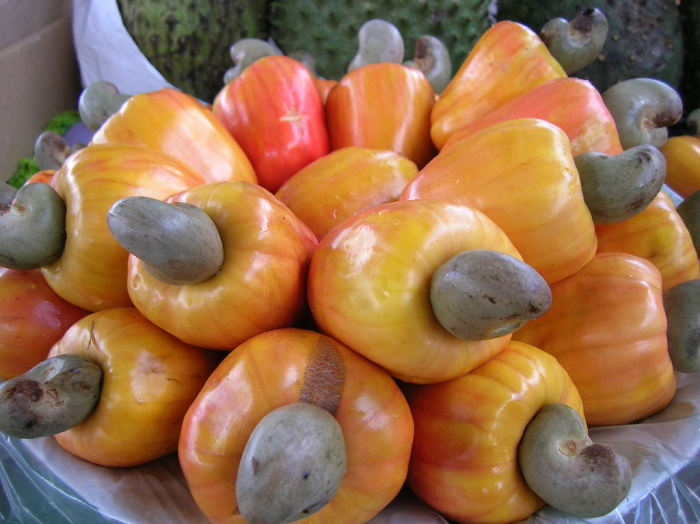 Caju nuts. Did you know it looks like that?
