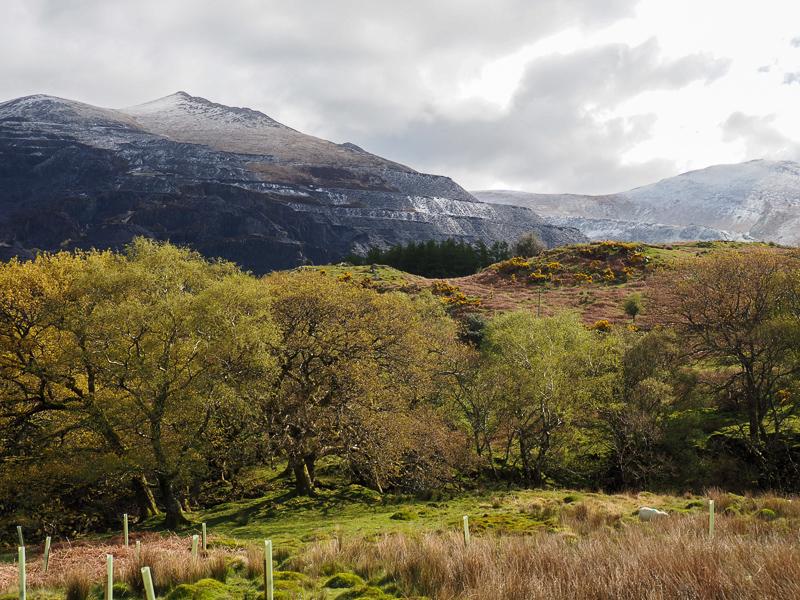 Vue du train en route vers le sommet du mont Snowdon.