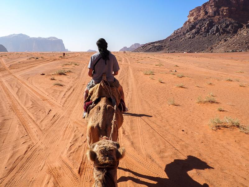 Randonnée à dos de chameau dans le désert du Wadi Rum.