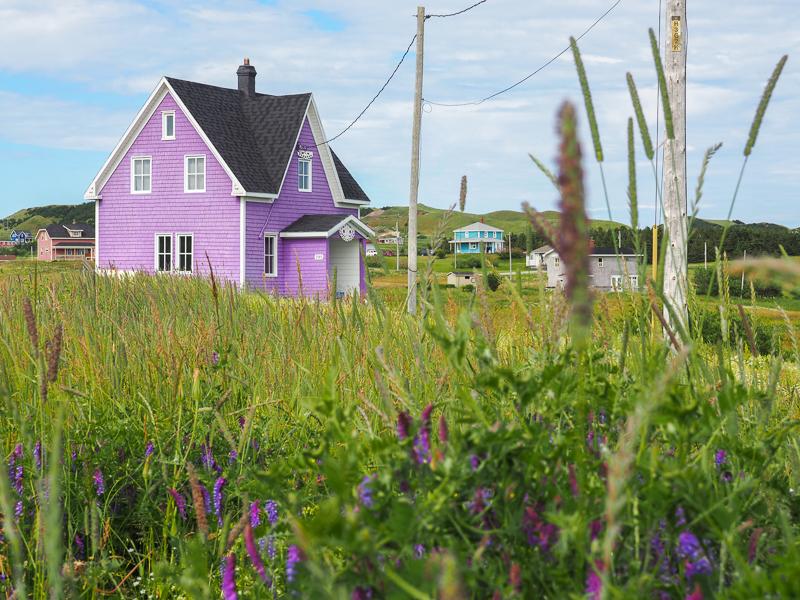 Maison mauve aux Îles de la Madeleine.