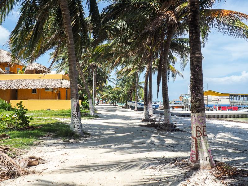 Allée sur l'île de Caye Caulker au Belize