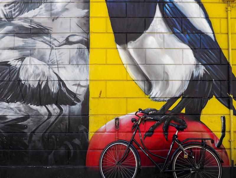 Street Art et vélo, deux caractéristiques de la ville de Rotterdam