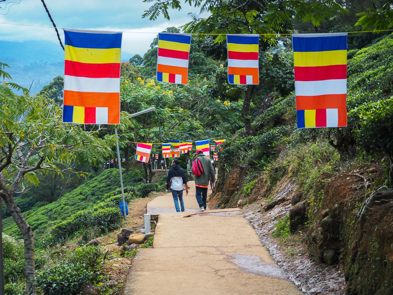 Sentier pour gravir le pic d'Adam au Sri Lanka