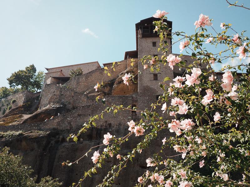 Fleurs près des monastères de Meteora
