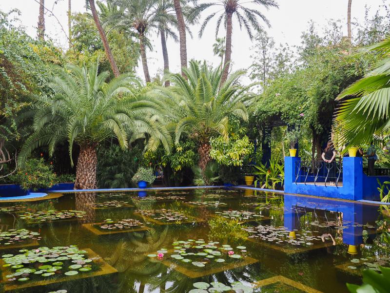 Étang au Jardin Majorelle de Marrakech. Parfait pour prendre une photo!