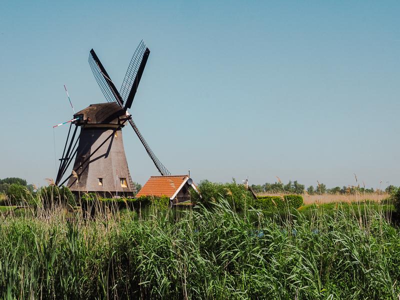 Kinderdijk - Site inscrit au patrimoine de l'UNESCO au Pays-Bas