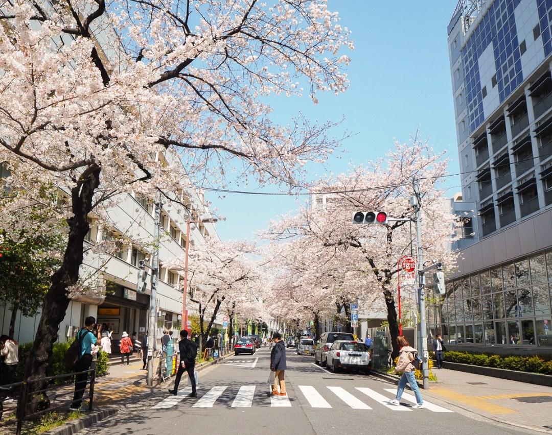 Que faire à Tokyo? Voici une liste d'incontournables à visiter dans les quartiers de la capitale du Japon