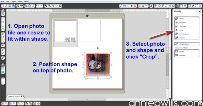 polaroid-photo-banner-by-annie-williams-crop-1