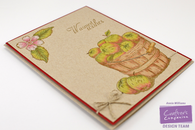 autumn-wishes-card-by-annie-williams-flat