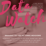 real estate data watch with raleigh broker Annie Meadows of Hudson Residential