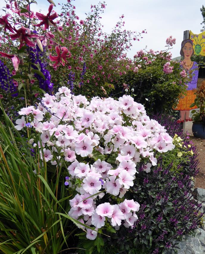 Shade Water Garden Plants
