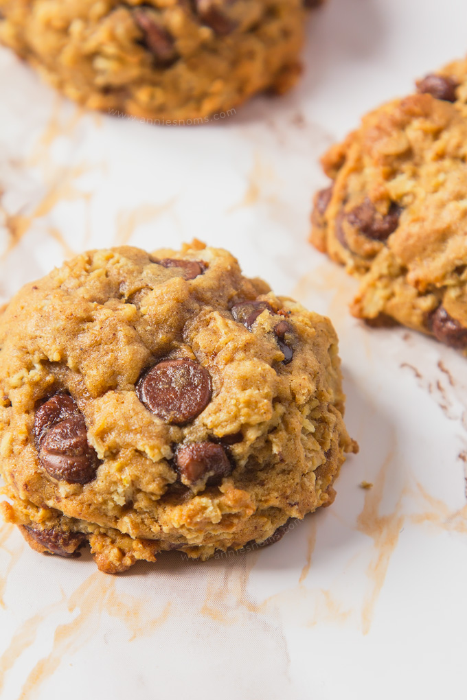 These Pumpkin Chocolate Chip Oatmeal Cookies are soft, chewy, spicy, more-ish and full of oozing chocolate chips.