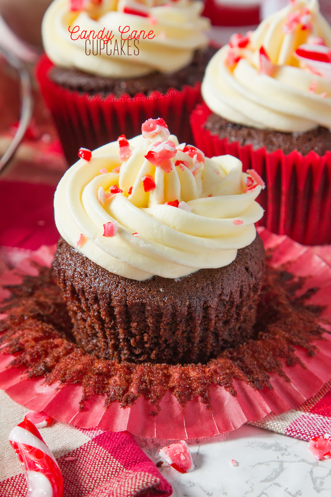 A soft, rich chocolate and peppermint cupcake is topped with smooth, peppermint frosting and finished off with crushed candy canes, creating a fun, festive cupcake!