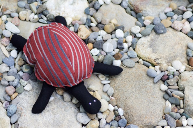 KSW: Schildkröte Nöck Nöck