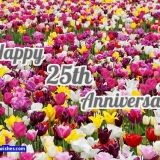 25th anniversary wishes