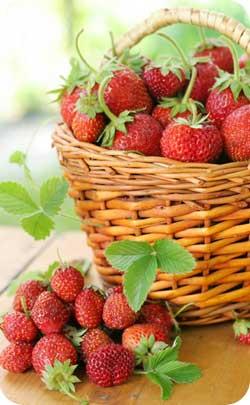 2 year alternate anniversary symbol strawberries