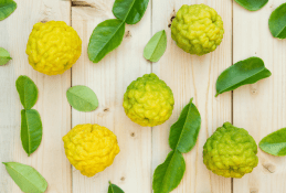 Facts You May Not Know About Bergamot Essential Oil