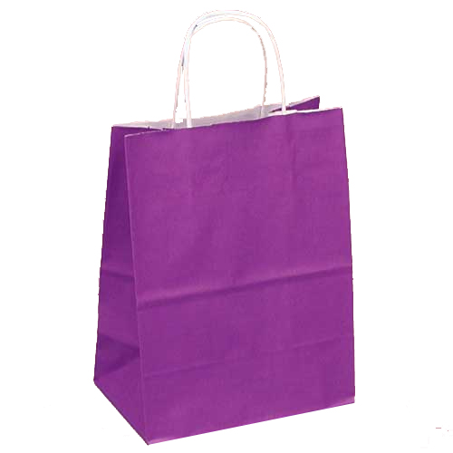 Purple Gift Bags With White Twisted Handle Birthday Gift Bags