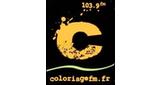 Coloriage FM