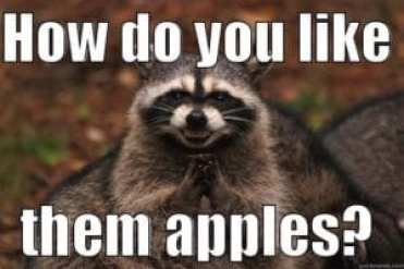 racoon saying how do you like them apples