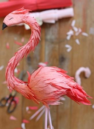coral flamingo
