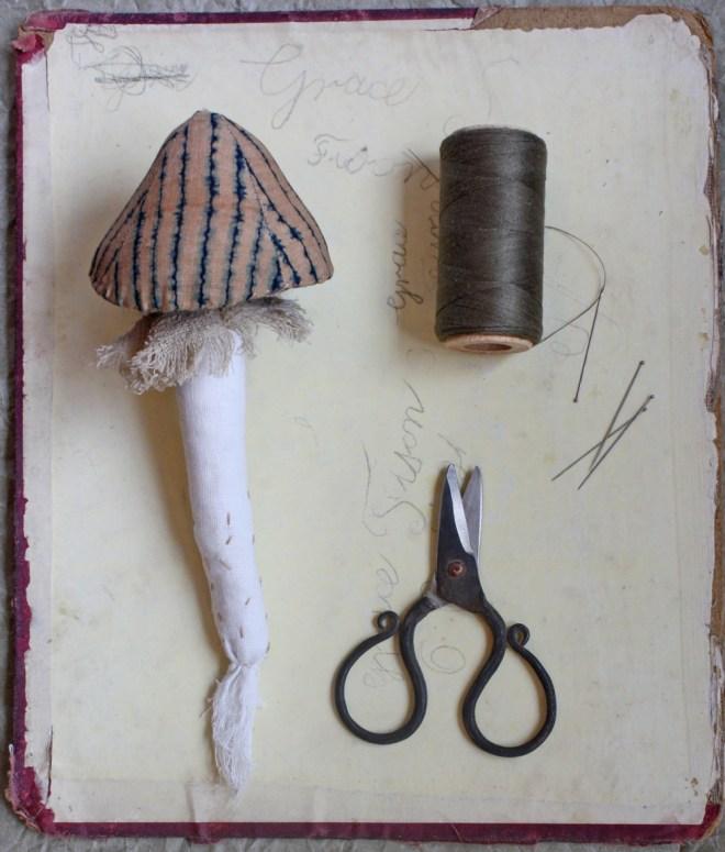 tara : mushroom