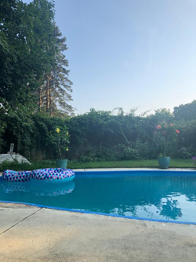 misty pool with sea serpent floatie