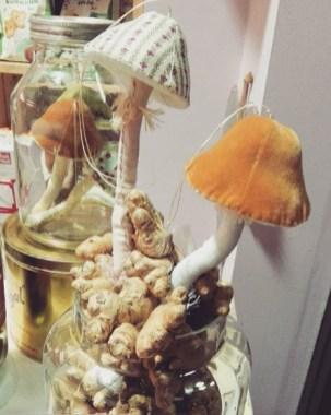 stella_mushroom