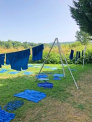 woad dye drying on the line
