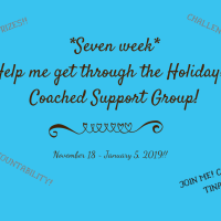 7 Week Help Me Get Through the Holidays! THM Coaching Group!