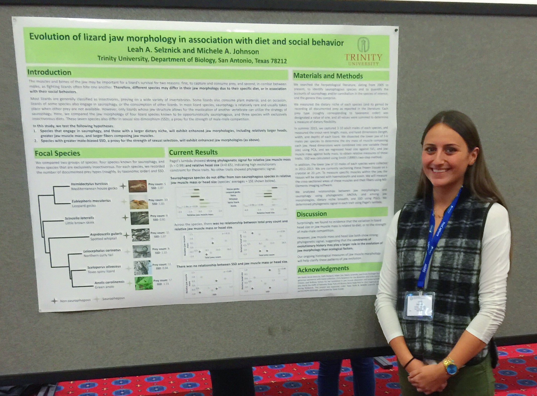 SICB 2016: Evolution of Lizard Jaw Morphology in Association