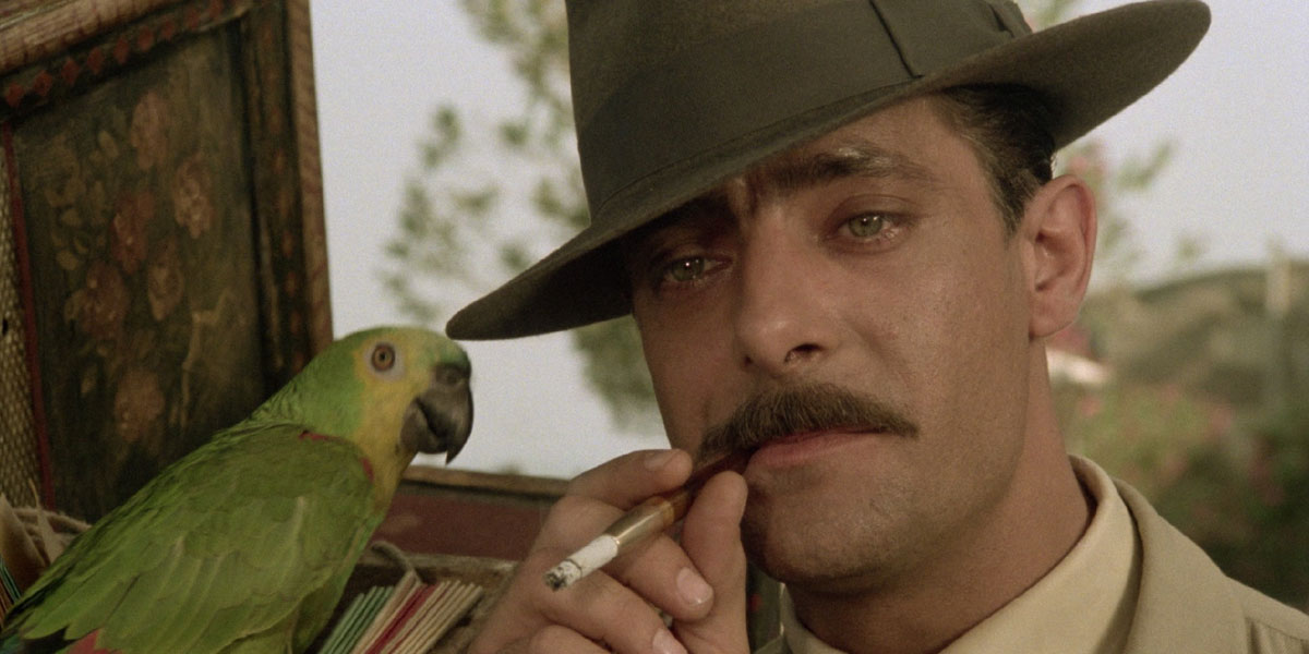 Giancarlo Giannini in una scena del film Pasqualino Settebellezze
