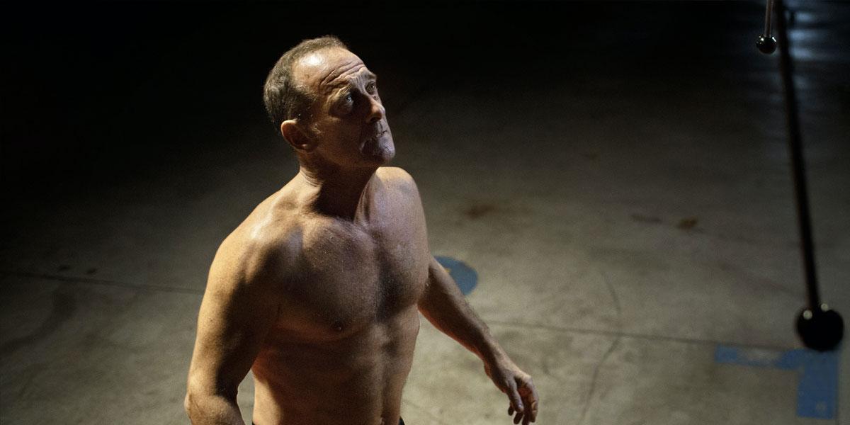 Titane spiegazione significato finale film titan palma oro Cannes scena sesso macchina bambino mostro gravidanza