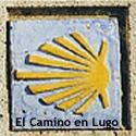 el camino de santiago en la diócesis de Lugo
