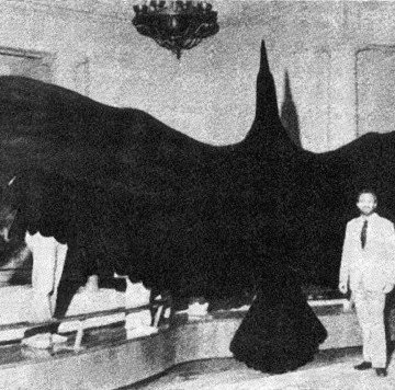 giant bird taxidermy