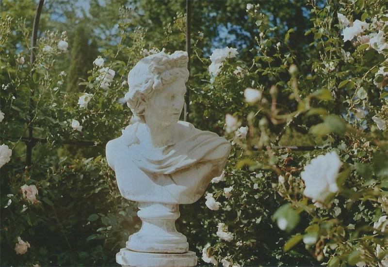 Bust in the rose garden