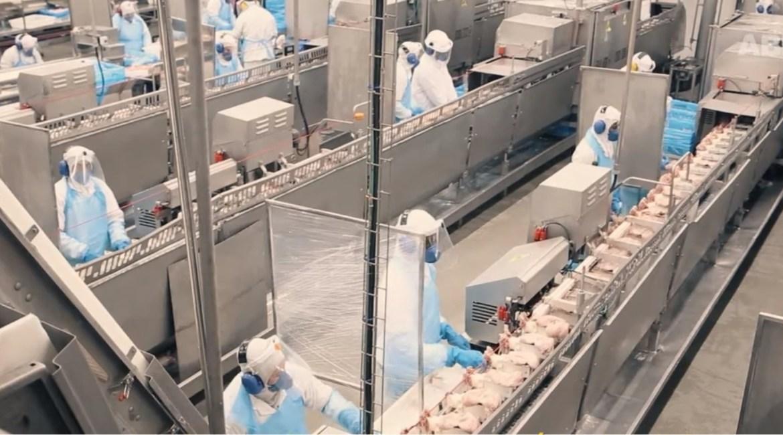 ABPA apresenta cuidados tomados nos frigoríficos durante a pandemia