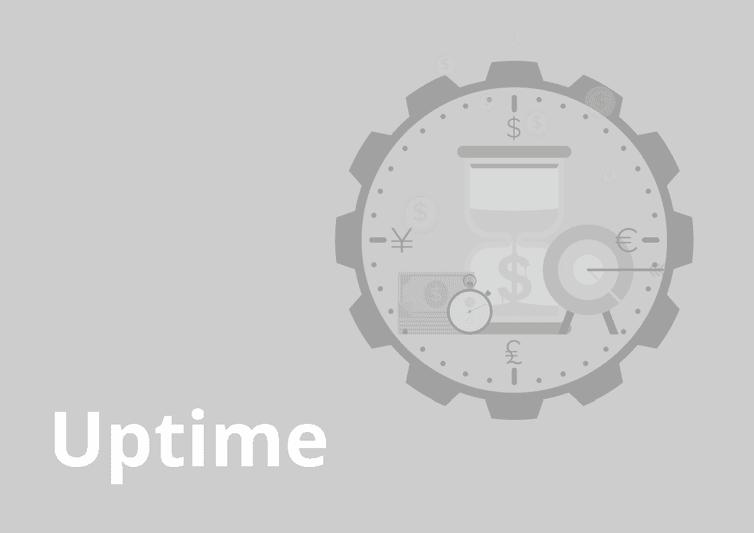 sample website report - uptime