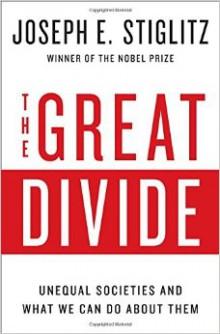 The Great Divide Stiglitz 2015