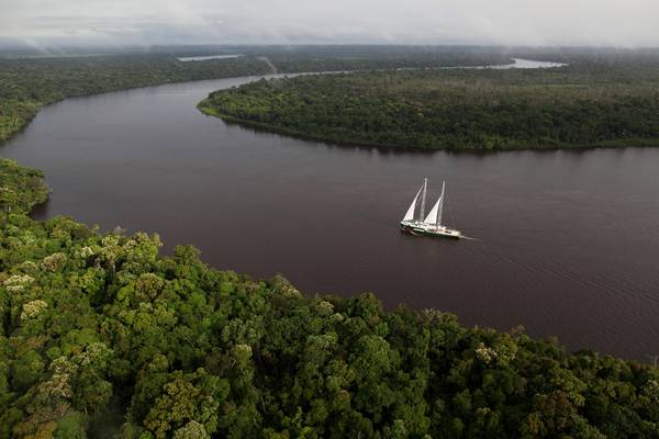 Sos Amazzonia, campagna Greenpeace