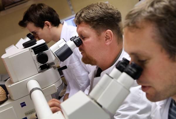 RAlzheimer, scoperto legame con anemia [ARCHIVE MATERIAL 20110831 ]