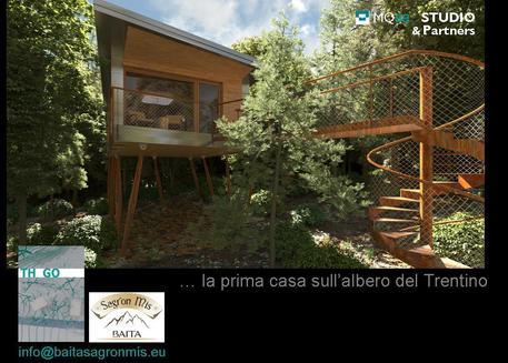 Turismo Prima Casa Sugli Alberi Del Trentino Trentino