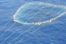 Aggrappati ad una gabbia di tonni, morti sette migranti