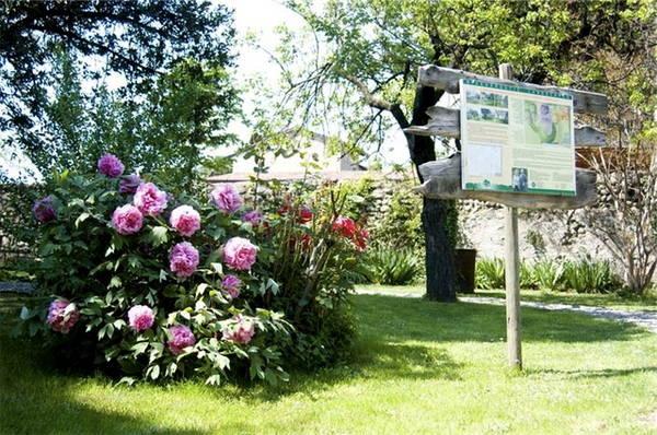 Il giardino bioenergetico