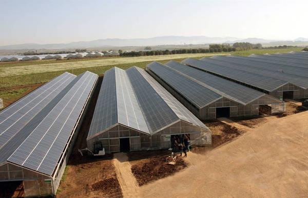 Sardegna: a Villasor la serra fotovoltaica più grande mondo