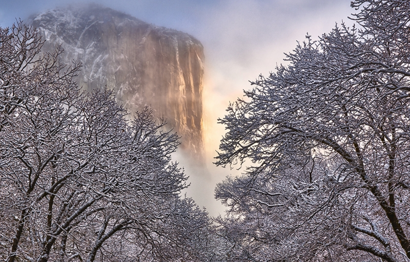 "Michael Wise, ""Crisp Winter, El Cap, Morning"""